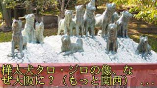 樺太犬タロ・ジロの像、なぜ大阪に?(もっと関西)とことんサーチ 樺太...