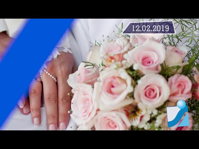 Новостная лента Телеканала Интекс 12.02.19.