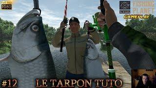 Fishing Planet #12 LE TARPON TUTO & LAMPE FRONTALE Floride Everglades TIPS GAME jeu de pêche 2017