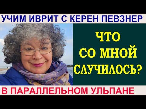 Книга: Язык родной, дружи со мной - Александр Шибаев