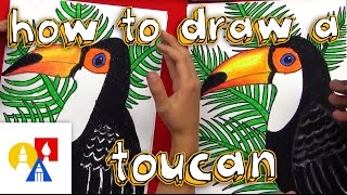 How To Draw A Realistic Toucan