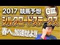 【競馬予想】 2017 シルクロードステークス 春へ、加速せよ!!