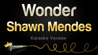 Shawn Mendes - Wonder (Karaoke Version)