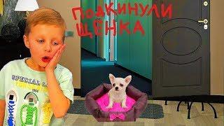 ПОДКИНУЛИ ЩЕНКА! Мама ПРОТИВ! Дети прячут собаку. Видео для детей