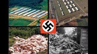 納粹大屠殺:來自倖存者的告誡 Holocaust Survivors Speak Out