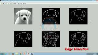 Image Segmentation Using MATLAB