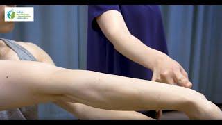 Arm & Wrist Exercises | CES Physio & Rehab