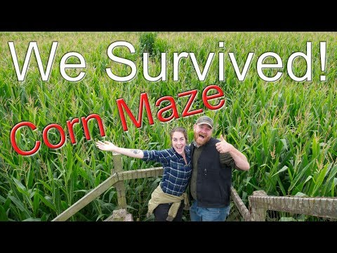 We survived the Washington State corn maze | Bus life Adventures