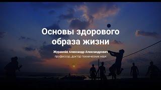 видео Основы здорового образа жизни