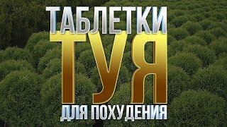 постер к видео ТАБЛЕТКИ ДЛЯ ПОХУДЕНИЯ. ТУЯ