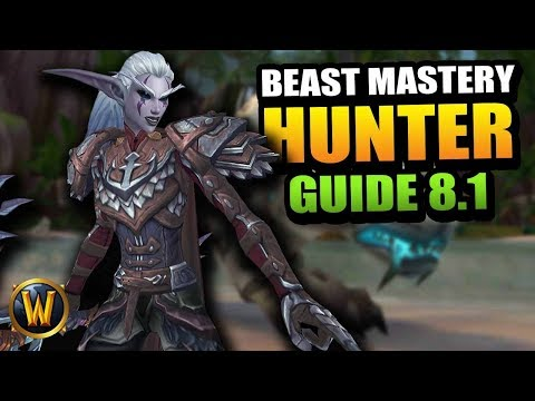 8.1 Beast Mastery Hunter Guide // World Of Warcraft