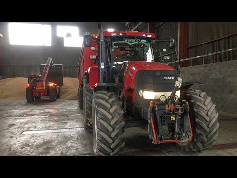 HARVEST 2018 - South Moravia | Claas Lexion 3x760, 770 Terra trac TT | John Deere and Case IH