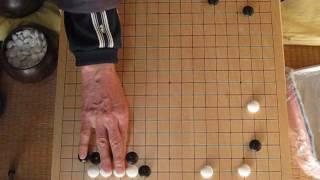 MR囲碁165-1 幻庵因碩vs葛野丈和 文化12年