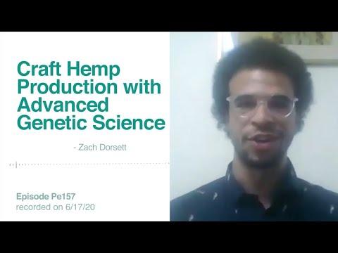 Zach Dorsett, CGO of Blue Forest Farms grows Hemp with Advanced Genetics