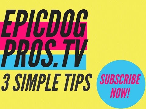 3 Simple Tips To Help You Train Your Dog / Epic Dog Pros with Dylan Blau