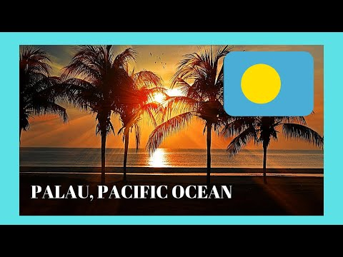 PALAU, Hello from beautiful KOROR (Western Pacific Ocean), a tour