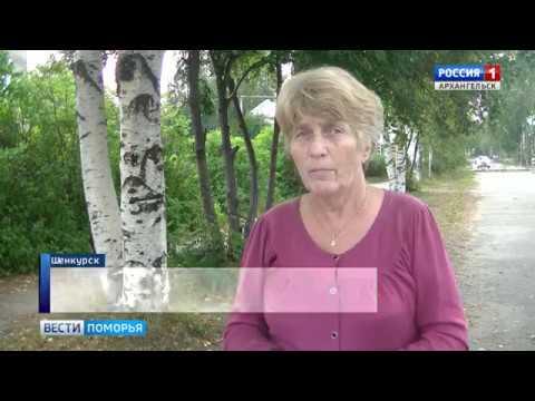 Жители Шенкурского района собрали больше тысячи подписей в поддержку своего главы