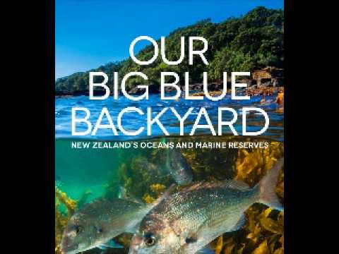 The CoffeeBar Kid Interviews Janet Hunt about Our Big Blue Backyard