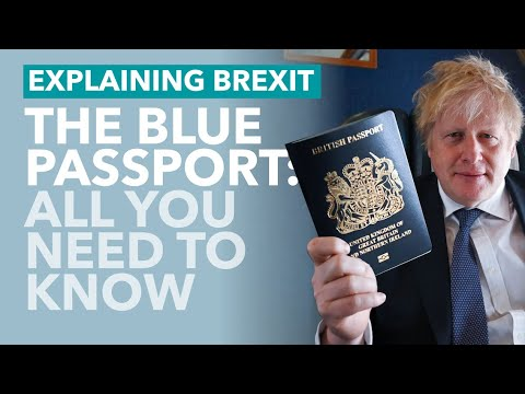 Britain's Blue Passports: Everything You Need To Know - TLDR News