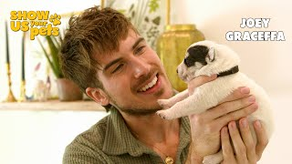 Meet Joey Graceffa's 11 Foster Puppies | Show Us Your Pets