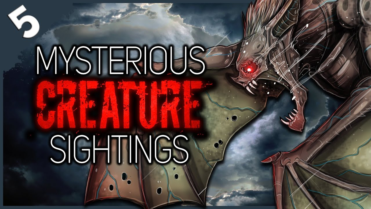 5 Mysterious Creatures Seen in the Sky | Darkness Prevails