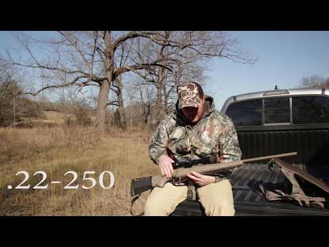 Coyote Hunting: What Gear To Use And Bring To The Field