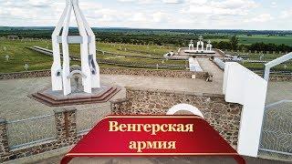 Как венгерская армия осталась под Воронежем