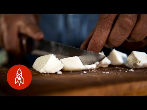 En Serbia producen el queso más caro mundo hecho con... ¡leche de burra!