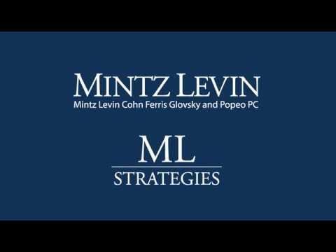 Mintz Levin Holiday eCard 2015