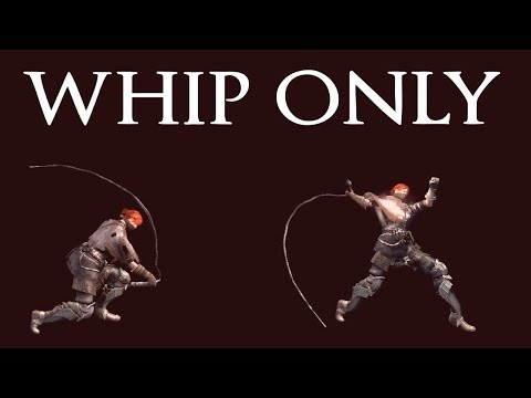 DS1 - All bosses killed by whip