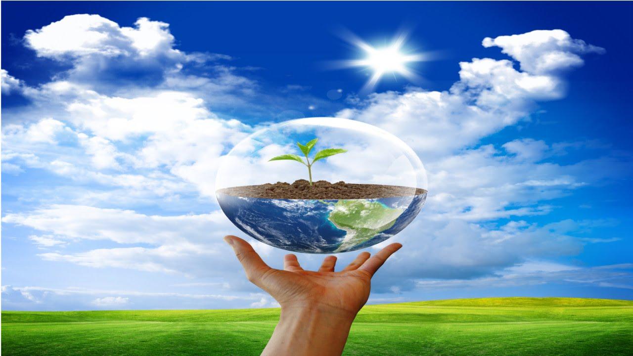 Lista de cursos na área de Meio Ambiente