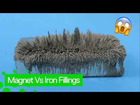 Magnet + Iron filings = Amazing Fun!