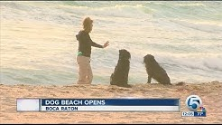 Dog beach park opens in Boca Raton