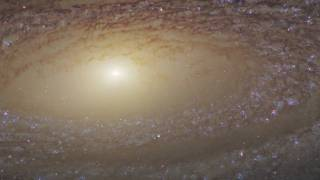 Hubble: Pan Across Galaxy NGC 2841 [1080p]