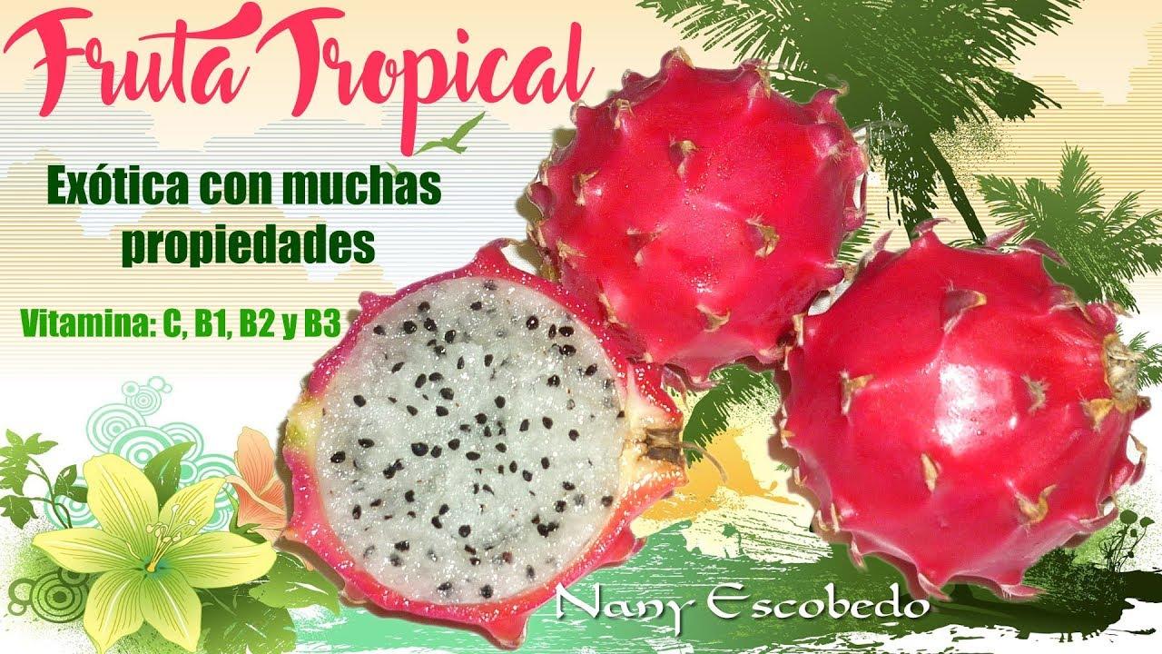 Fruta Tropical Exotica Con Muchas Propiedades Youtube