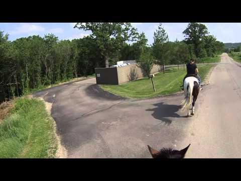 GALENA TERRITORY SHENANDOAH HORSEBACK RIDING