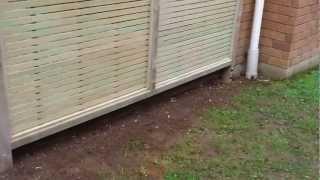 Safe Pergola & Deck Construction - Te Atatu Peninsula
