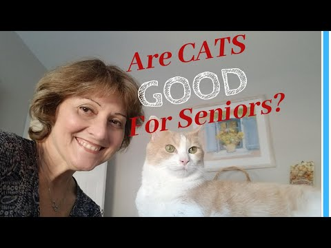 COMPANION PETS FOR SENIORS: Do Cats Make The Best Pets For Elderly Parents?
