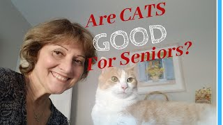 COMPANION PETS FOR SENIORS: Do Cats Make The Best Pets For Elderly Parents?