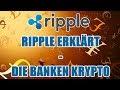 Ripple XRP News - YouTube
