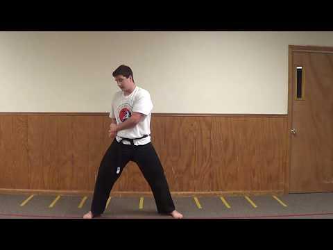 True Warrior Martial Arts - Pal Sek form - front view