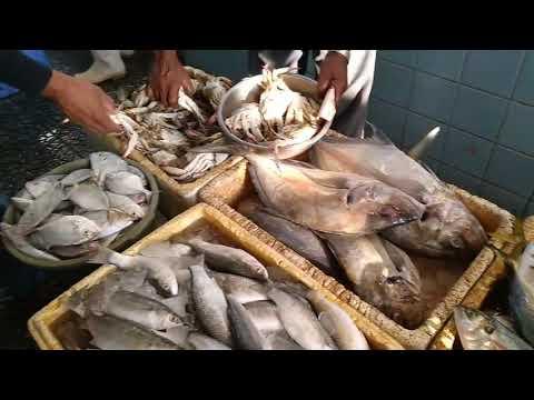 Biking And Buy Fresh Fish In The Fish Market..