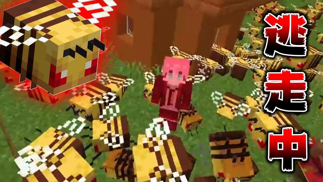 """【マインクラフト】無限に増える""""大量のハチ""""からガチで逃走中してサバイバルたら、最悪な結末にwwwwwww【マイクラ】【minecraft】"""