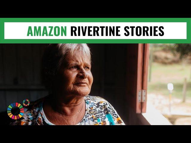 CIPO DE JABUTI - AMAZON RIVERTINE STORIES: MY World 360º 2019.