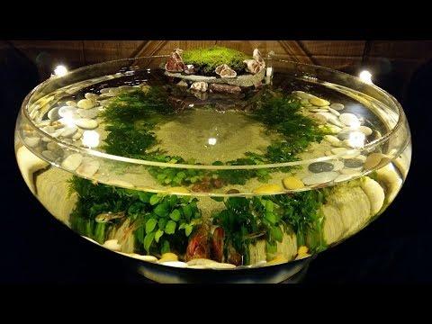 DIY Fish Bowl