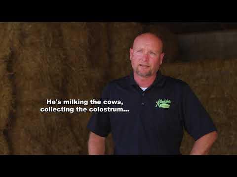 Dairy Careers - Kreider Farms