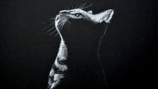 Dibujando un gato - blanco sobre negro (Time Lapse)- Arte Divierte.