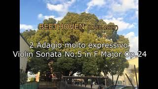 [DTM] 2.Adagio molto expressivo. Beethoven Violin Sonata No.5 in F Major Op.24