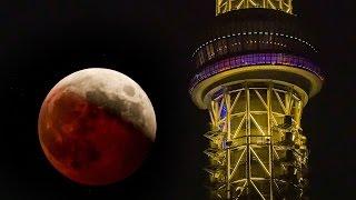 今週水曜日(2014年10月8日)、東京で見られた皆既月食です。 欠け始めか...