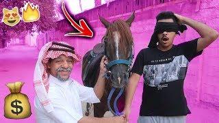 أبوي اشترى لي حصان هدية بقيمة 20,000 الف ريال !! لايفوتكم